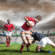 O2I Provided Data Entry and Image Tagging Services for an Irish Sports Analytics Firm