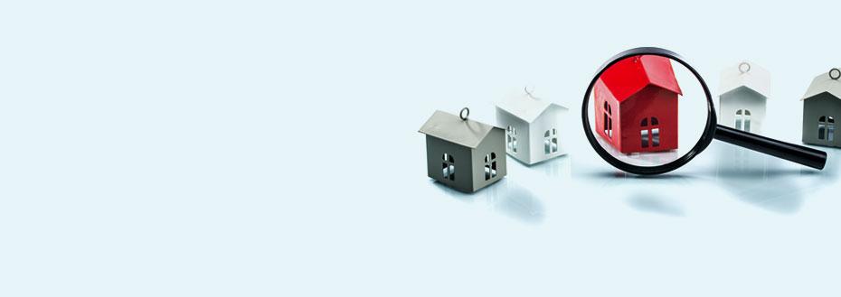 Real Estate Data Management Services