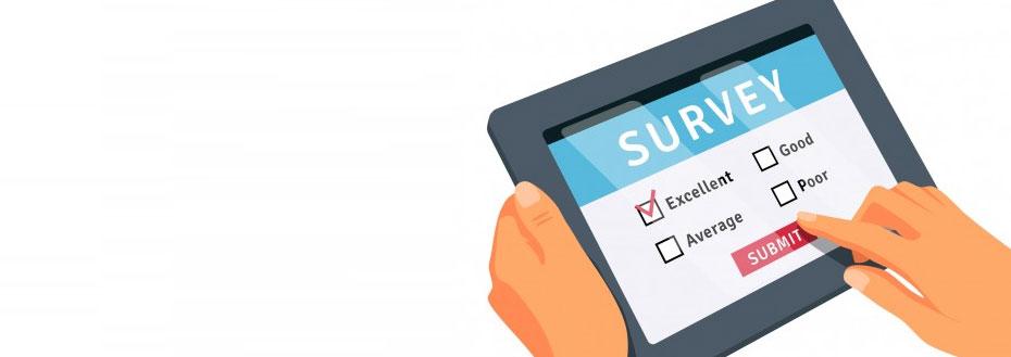 Healthcare Surveys Services