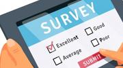 Conducting Surveys and Gathering Feedback