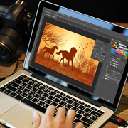 Case Study on Image Manipulation Digital Graphics Producer