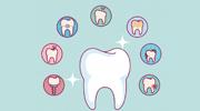 Professional Dental Care Illustrations