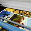 Screen-printing Vector Artwork Services