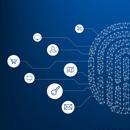 Verification Services