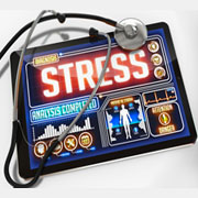 Engineering Support Services & Stress Analysis