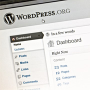 IT Staffing for WordPress Developers