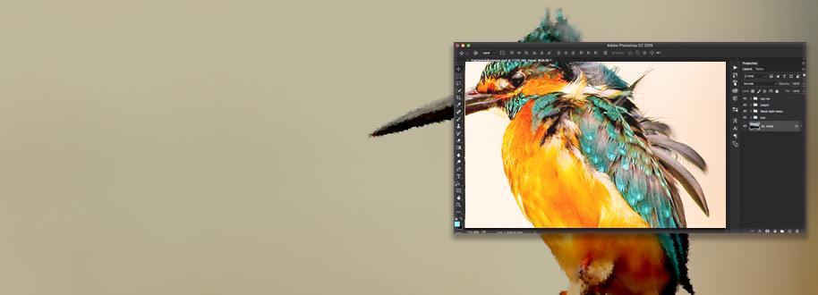 Outsource Photoshop Enhancement Services
