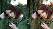 Adjusting Portrait Brightness and Contrast