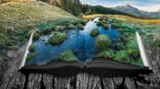 Focus Stacking for Landscapes