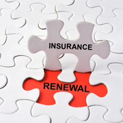 Insurance Renewal Exposure Summary Services