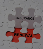 Insurance Renewal Exposure Summary