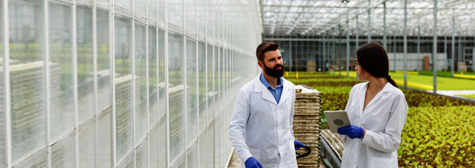 Agriculture Market Research Services