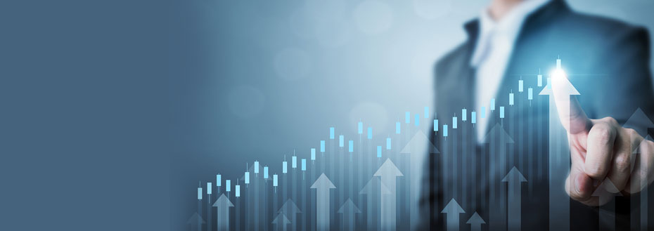 Business Benchmarking Services