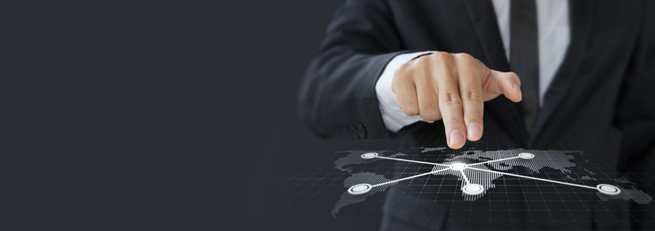 Integrated Business Planning Services