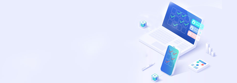 Survey Programming Services