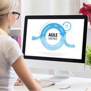 Agile Development Services