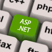 ASP.NET Programming Services