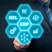 Enterprise Resource Planning Services