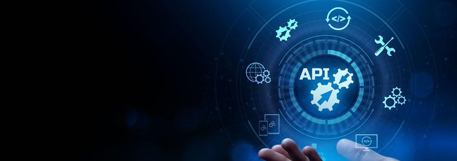 Rest API Development Services