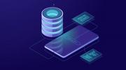 Application Database Management