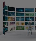 Video and Image Analytics