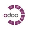 Odoo Development Services