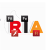 Rich Internet Application Development Services