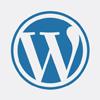 WordPress Theme Development Services