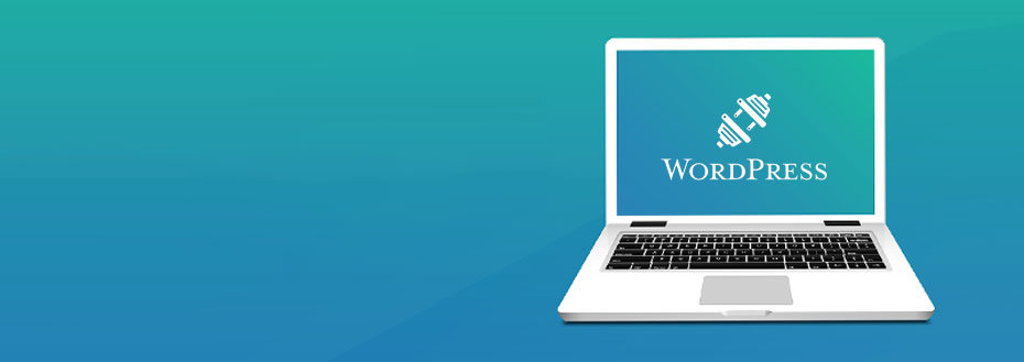 WordPress Plugin Development Services